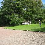 Gwen's relaxing gardens