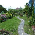 "A small section of David's ""tropical"" garden"