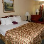 Comfortable King Size Beds