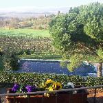 Photo of Agriturismo Podere La Villetta