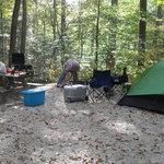 campsite 209
