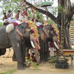 temple festival