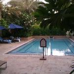 """The """"private"""" pool"""