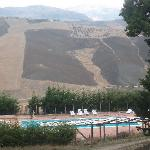 The pool and landscape in October
