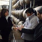 Ruta del vino en Mendoza 2011