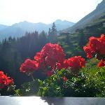 Blick vom Ausflugsziel Bichlalm