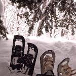 スノーシューで歩いて木の下でひと休み