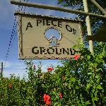Foto de A Piece of Ground