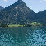 The swimming scene