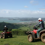 Enjoy spectacular views over Mercury Bay during your quad bike ride