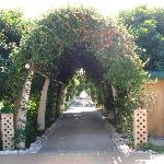 Leading to the beach.