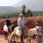 Mule trek