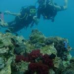 Buceo Phuket1