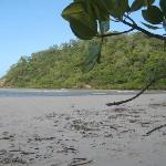 Cape Tribulation Beach: paradise on Earth