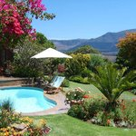 Cape Witogie - Pool and Garden