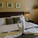 picture i take for the le royal bed ,very comfortable.