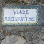 Axel Munthe Street