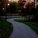 Tranquil trail