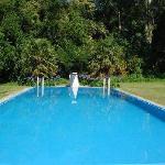 Main pool