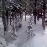 Let it snow!!