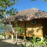 view of native cabana