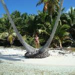 Playa isla Saona