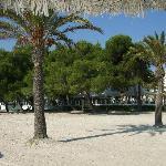 Foto de Hotel JS Sol de Alcudia
