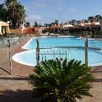 Thw new pool