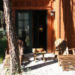 Private back patio area