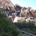 just a tiny section of the humongous Red Rock Canyon