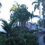 Veranda view 2