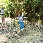 """Pete Training a New """"Jane of the Jungle"""""""