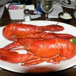 Heavenly lobster in Eastport, ME