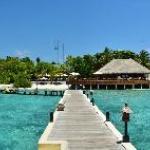 the whole island