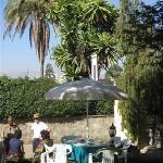 The famous garden