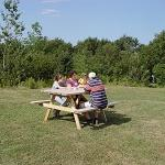 Cook supper on the BBQ and enjoy your meal at the picnic table on the lawn.
