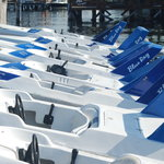 Our boats ready for action!