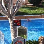 Morning pool temp