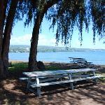 Hilo Bayfront sleepy torpor