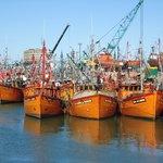 Puerto, lanchas pesqueras