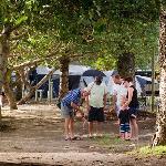 Massey Greene Holiday Park