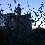 A view of the moon from the garden