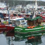 el puerto de luarca, barcos