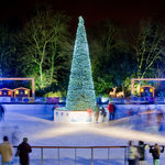 The magical Ice Rink at night