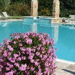 Borgo Al Cerro - pool and Jacuzzi