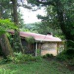 Log cabin exterior