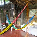 hammocks inside cabana