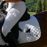 Ride Classical Dressage in Tuscany!