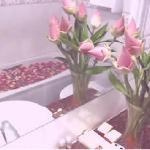 Bathroom - Battambang Lotus Hotel