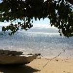 View from the Safari Lodge swing Fiji!